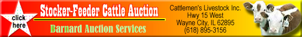 auctions and auctioneers list found here